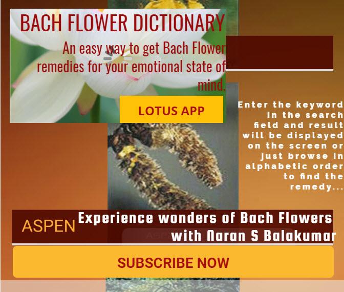 Reach Naran » Bach Flower Dictionary